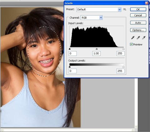 Photoshop FaceMask Histogram