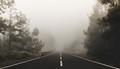 Morning fog on the road (Tenerife)