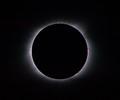 EWP_3986_20170821_2038Total Eclipse