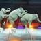 3 Ring Circus AA Arena