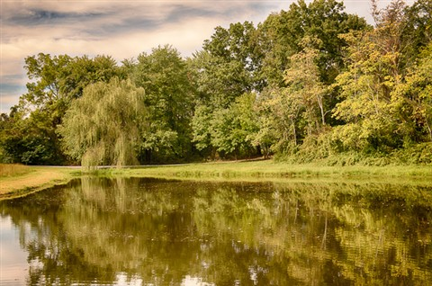 Grey Ghost Pond HDR