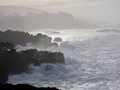 Sonoma Winter Coast