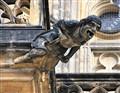 St Vitus Cathedral gargoyle