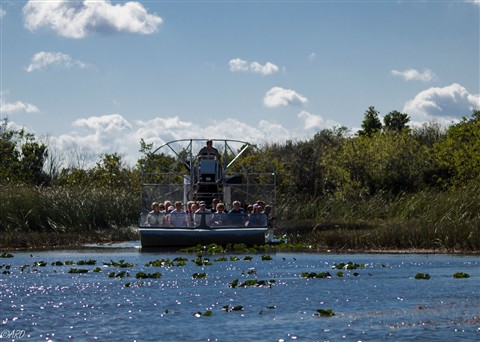 Everglades Air Boat 01-055579