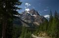 Road in Canadian Rockies