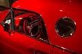 Red Thunderbird-9180