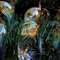 Chihuly Glass - Atlanta Botanical Gardens