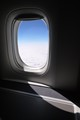 Window on flight