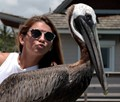 Kiss The Pelican!