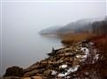 misty bay
