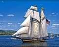 TAll SHIP and ...