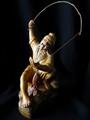The Chinese Fisherman