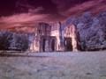 Roche Abbey IR