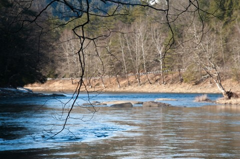 Branches w/ Clarion River in the Background No 1 (D700)