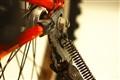 my red bike-yon