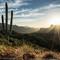 Apache Trail-00485
