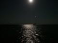 Bodrum by night