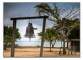 Amazon river community bell
