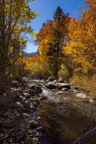 Sierra Fall 1