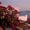 Santorini_010