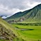green valley of Altai