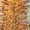karls.2012.05.07.flora.d700-9128-4