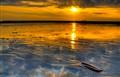 Sunset shell
