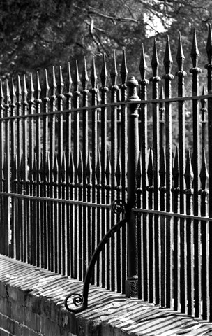 Wrought Iron_BW_DSC01452