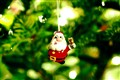 Xmas-tree: Red Santa Claus in the green forest