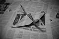 Newspaper Crane
