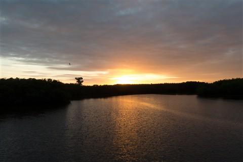 Lookout tower sun rise (Original)