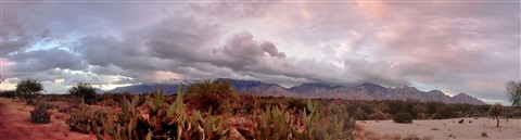 Tucson_sunset (3)