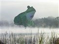Frog balloon over misty lake