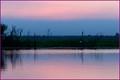 Bluehour Wetland Billabong NT