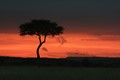 Sunset in Maasai Mara National Reserve, Kenya