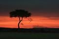 Sunset in Maasai Mara National Reserve, Kenya