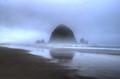 Foggy day on Cannon Beach