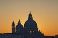 Domes of Venice