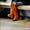 DSCF0124ps-boots