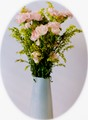 Soft Flowers - Nikon F3