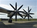 NK-12 Blades