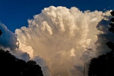 Storm Brewing