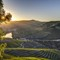 The sunset in Douro Region