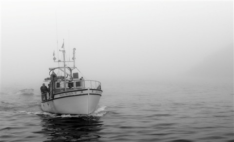 Out Of The Fog B&W