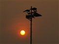 Solar Energy Or Electric Energy