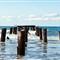 Fisherman's Island_MG_4269_AJG
