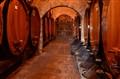 Wine cellar, Tuscany