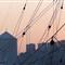 TallShips_Genova_29-07-07_33