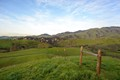 Rolling hills of California