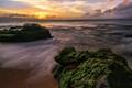 Maui Sunset -1